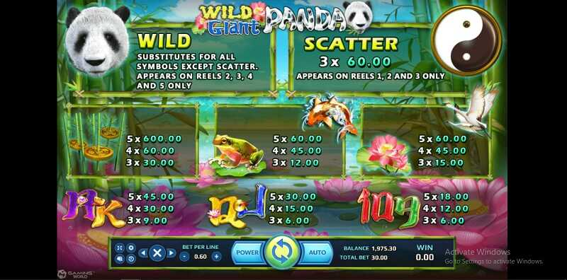 wild & scatter